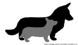 Cardigan Welsh Corgi Health Foundation Logo