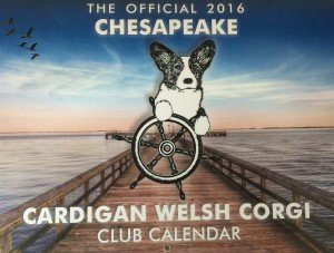 Front Cover CCWCC Calendar